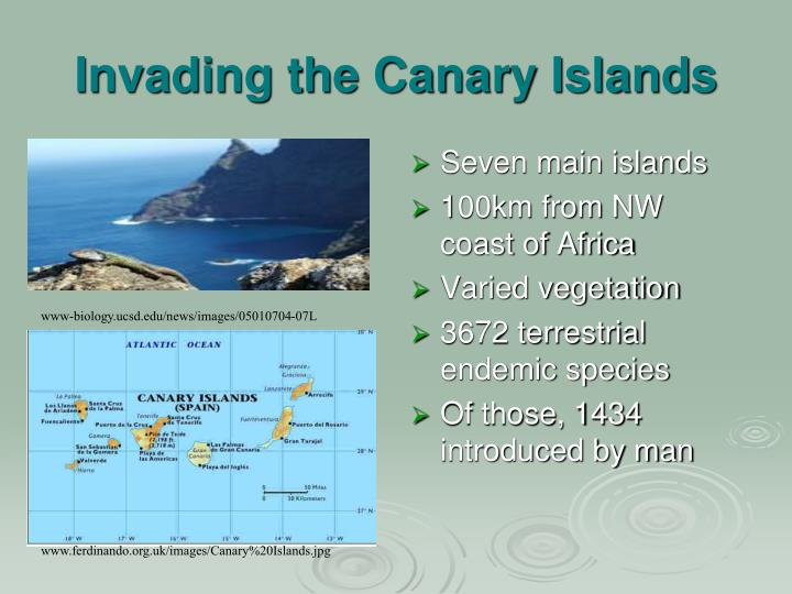 Invading the Canary Islands