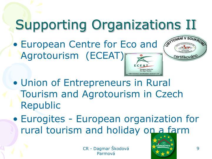 Supporting Organizations II