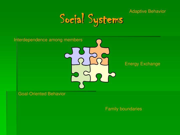 Social Systems