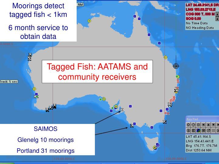 Moorings detect tagged fish < 1km