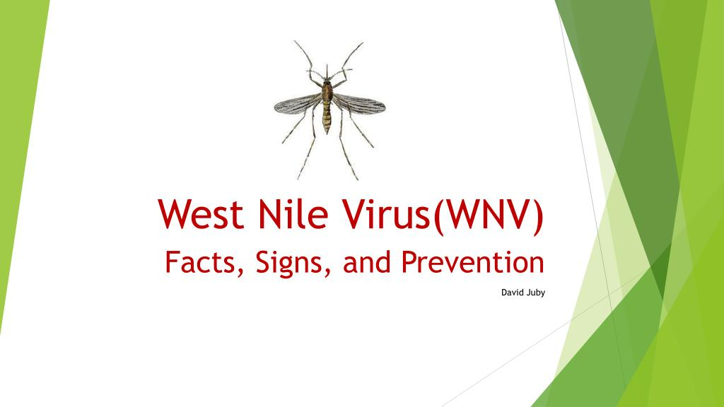 Ppt West Nile Virus Wnv Powerpoint Presentation Id