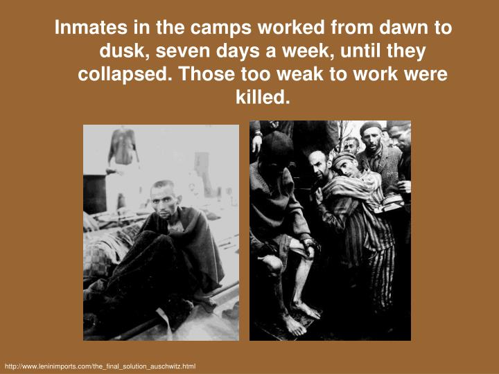 Inmates in the camps worked from dawn to dusk, seven days a week, until they collapsed. Those too weak to work were killed.