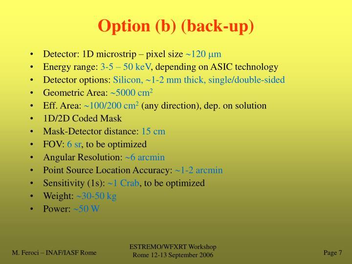 Option (b) (back-up)