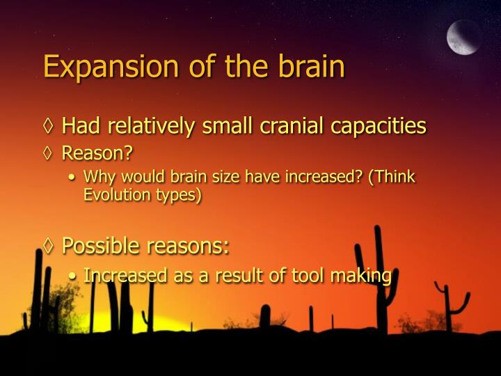 Expansion of the brain