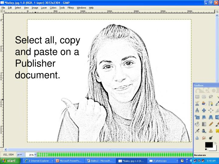 Select all, copy and paste on a Publisher document.