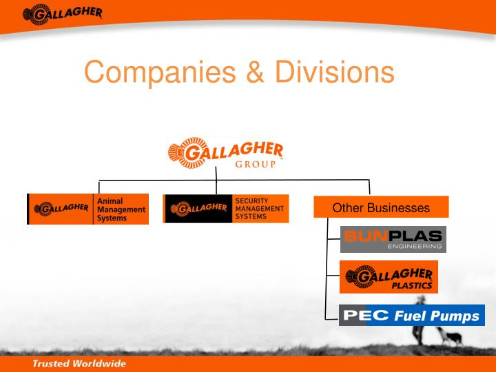 Companies & Divisions