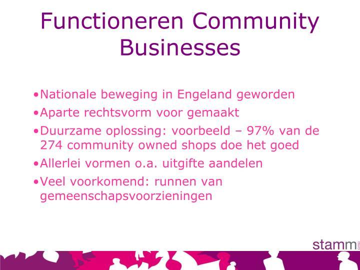 Functioneren Community Businesses