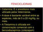 feniciclidinas