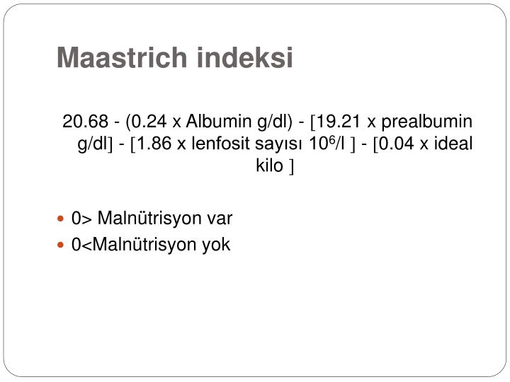Maastrich indeksi