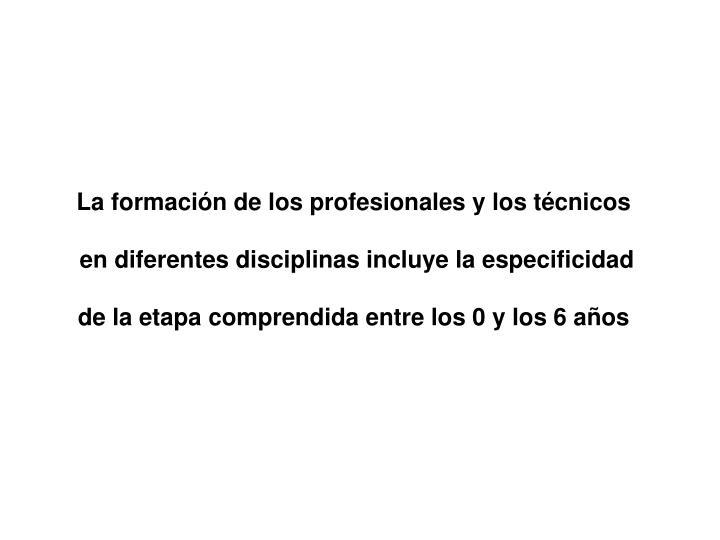 La formación de los profesionales y los técnicos