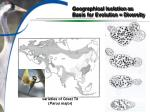 geographical isolation as basis for evolution diversity