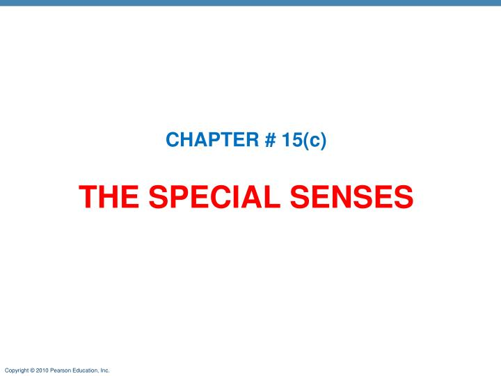 PPT - THE SPECIAL SENSES PowerPoint Presentation - ID:5102551
