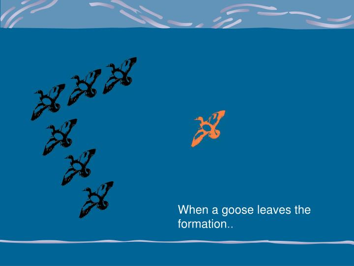 When a goose leaves the