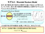 3 wounded nucleon model