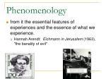 phenomenology