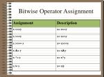 bitwise operator assignment
