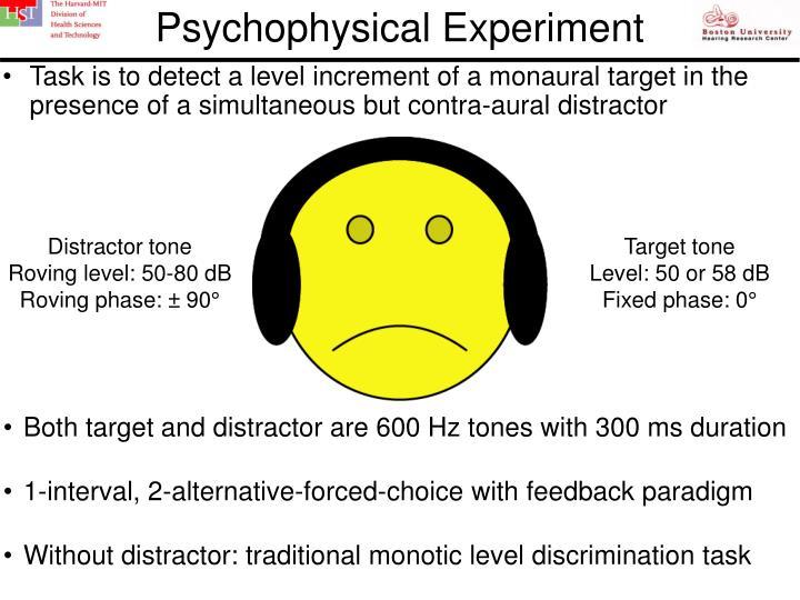 Psychophysical Experiment
