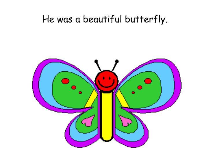 He was a beautiful butterfly.