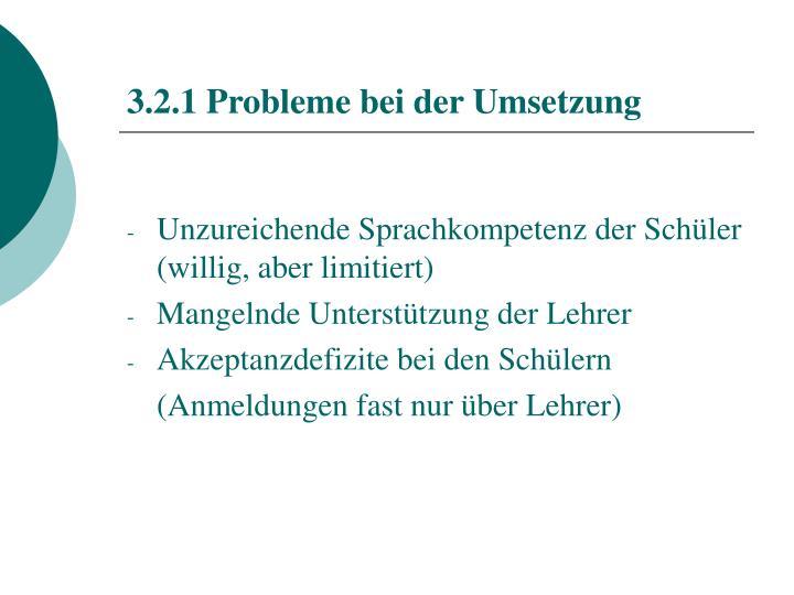 3.2.1 Probleme bei der Umsetzung