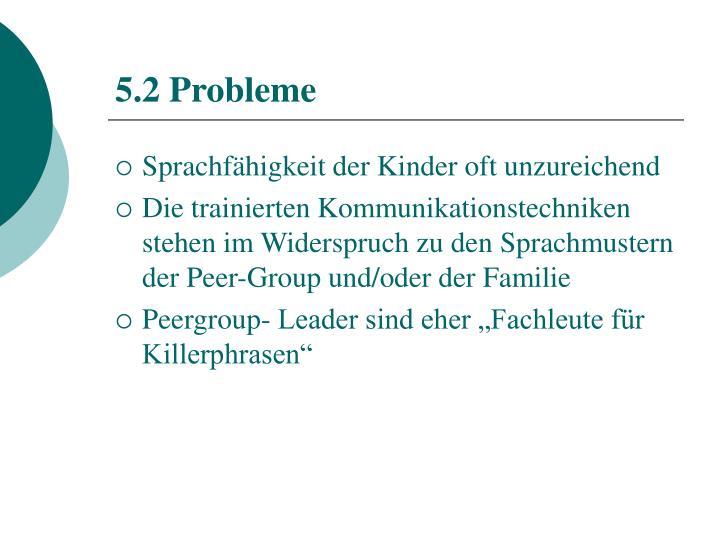 5.2 Probleme