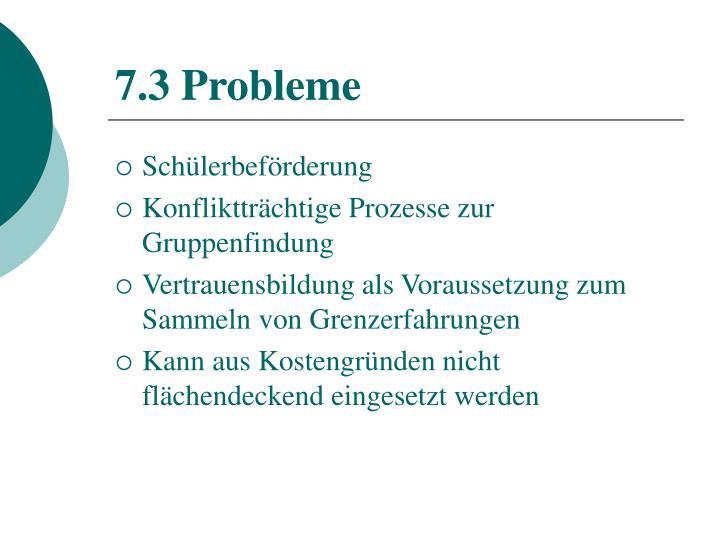 7.3 Probleme