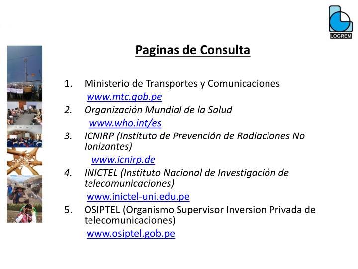Paginas de Consulta