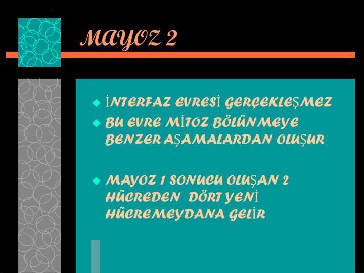 MAYOZ 2