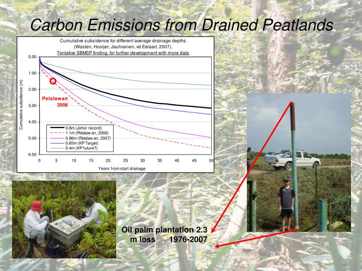 Carbon Emissions from Drained Peatlands
