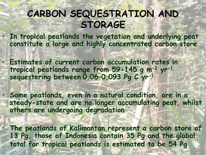 CARBON SEQUESTRATION AND STORAGE