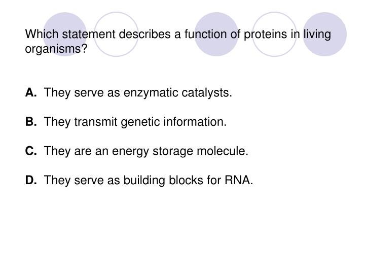 Which statement describes a function of proteins in living organisms?