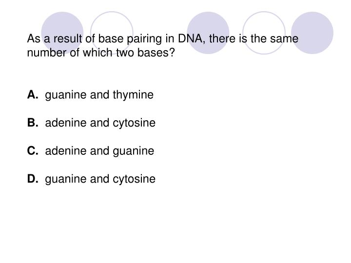 As a result of base pairing in DNA, there is the same number of which two bases?