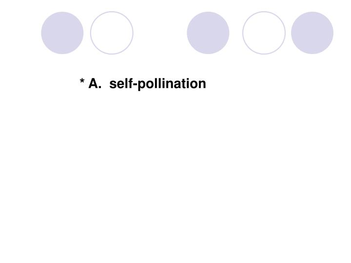 * A.  self-pollination