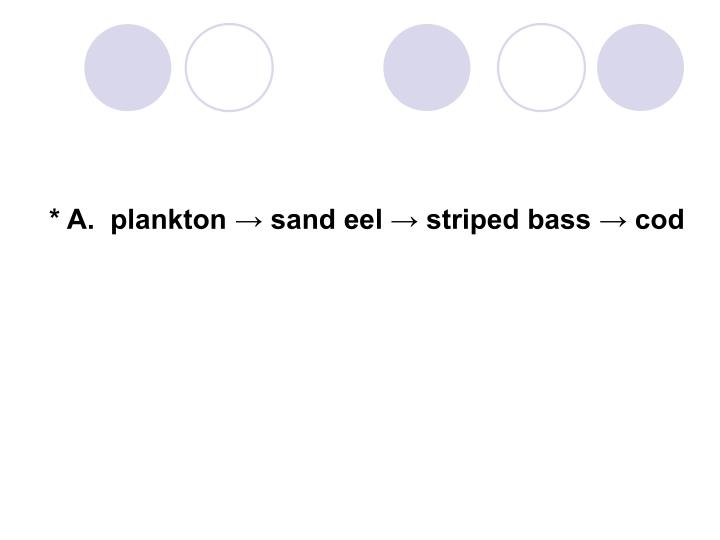 * A.  plankton → sand eel → striped bass → cod