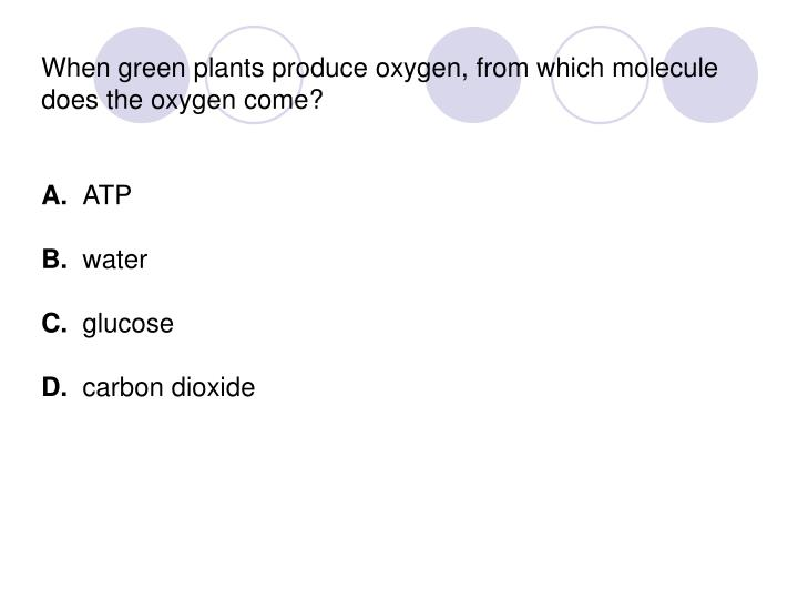 When green plants produce oxygen, from which molecule does the oxygen come?
