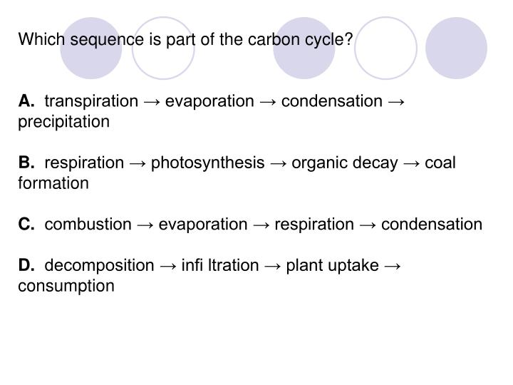 Which sequence is part of the carbon cycle?