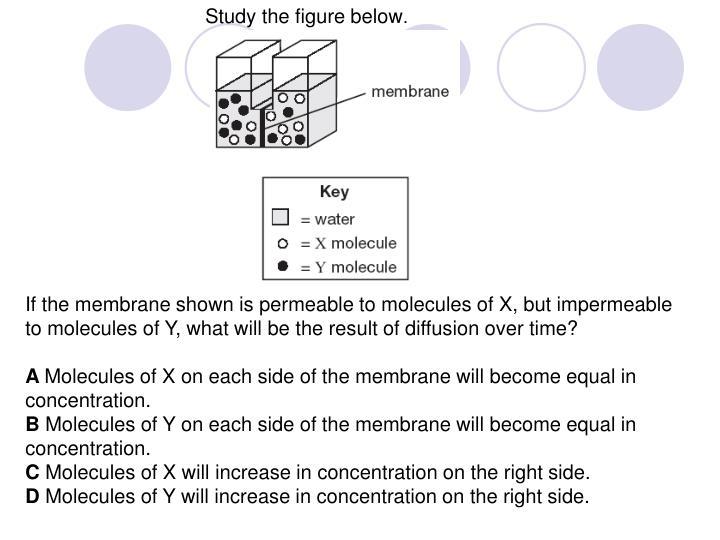 Study the figure below