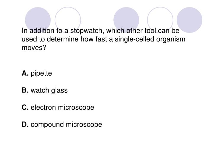 In addition to a stopwatch, which other tool can be used to determine how fast a single-celled organism moves?