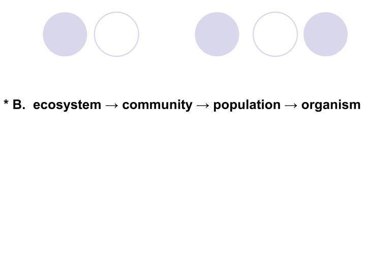 * B.  ecosystem → community → population → organism