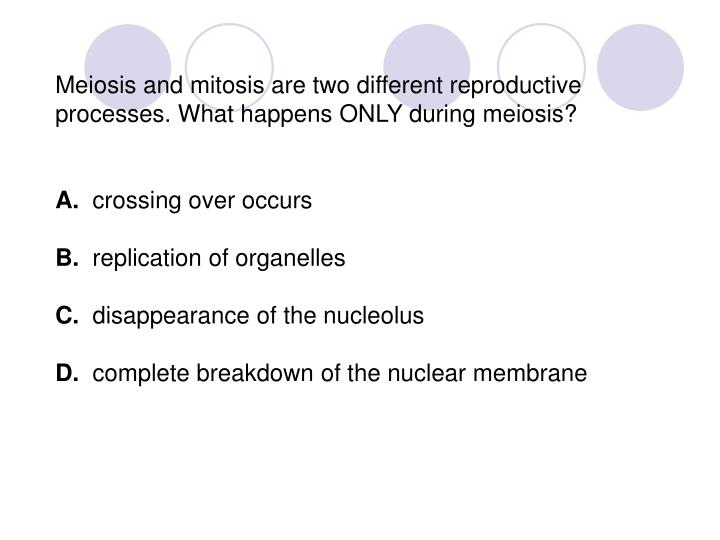 Meiosis and mitosis are two different reproductive processes. What happens ONLY during meiosis?