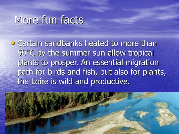 More fun facts
