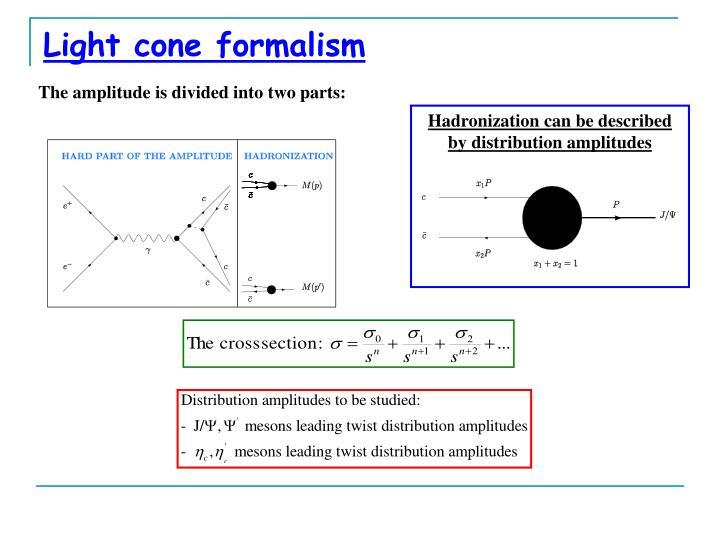 Light cone formalism