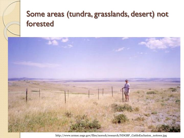 Some areas (tundra, grasslands, desert) not forested