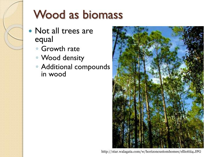 Wood as biomass