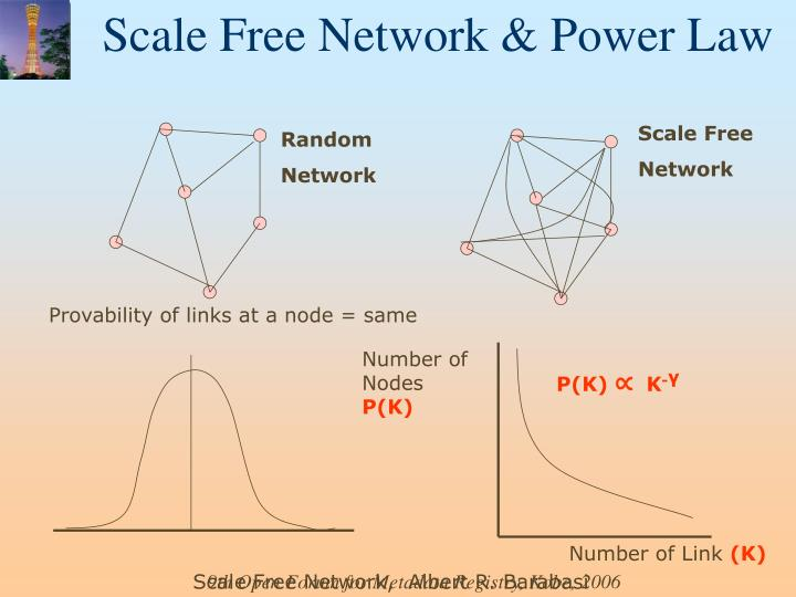 Scale Free Network & Power Law
