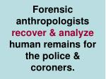 forensic anthropologists recover analyze human remains for the police coroners