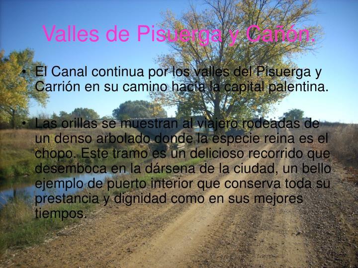 Valles de Pisuerga y Cañón.