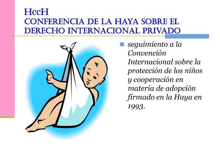 seguimiento a la Convención Internacional sobre la protección de los niños y cooperación en materia de adopción firmado en la Haya en 1993.