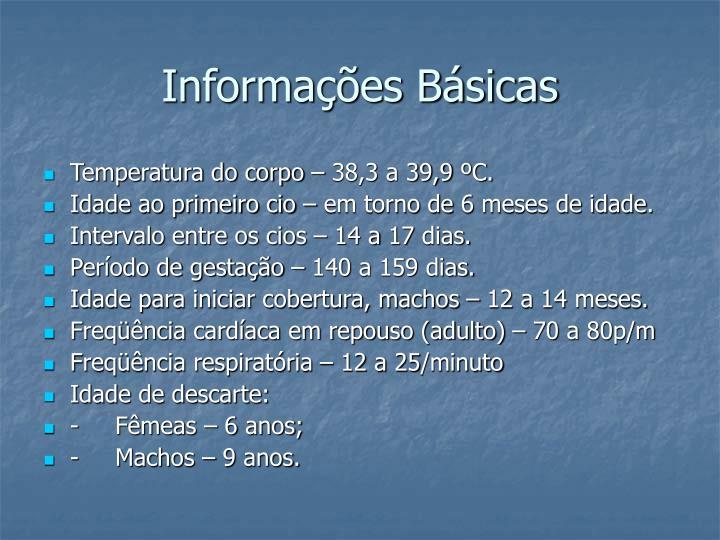 Informa es b sicas