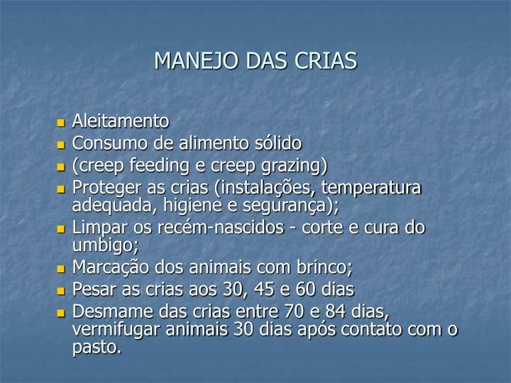 MANEJO DAS CRIAS