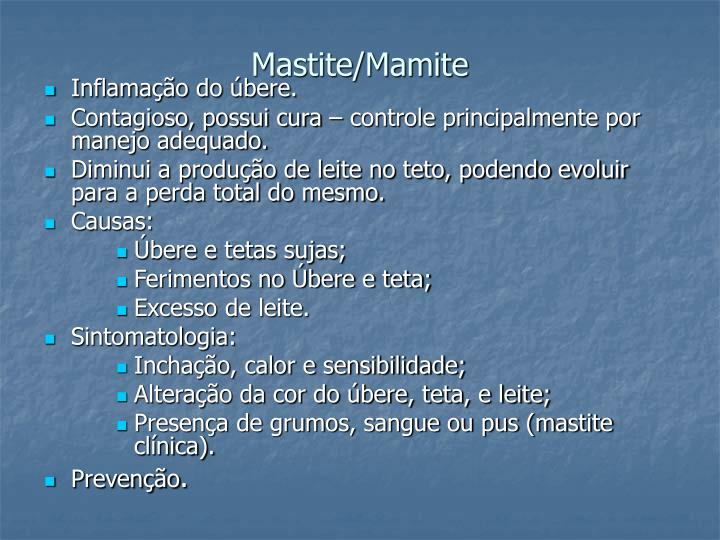 Mastite/Mamite